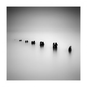 Sandsend, poles, #1